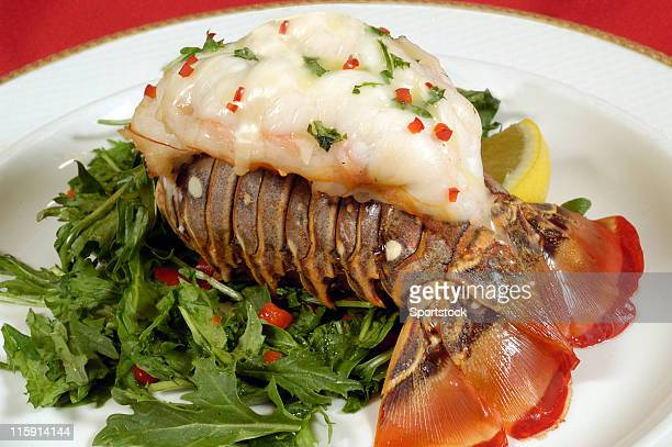 lobster tail - tail stock pictures, royalty-free photos & images