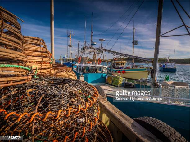 lobster (crayfish) trawler's in the currie harbour, king island, tasmania - bass strait stock pictures, royalty-free photos & images