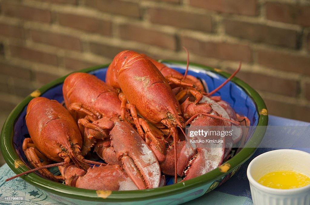 Lobsters : ストックフォト