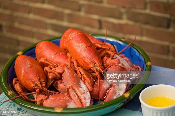 lobsters - kazuko kimizuka bildbanksfoton och bilder