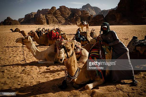 CONTENT] A local bedouin man waits for visitors to take guided rides on his camels in Wadi Rum desert