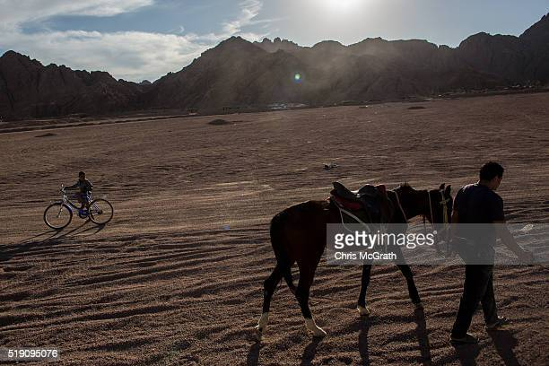 A local boy watches on as a horse riding tour guide walks past on April 2 2016 in Sharm El Sheikh Egypt Prior to the Arab Spring in 2011 some...
