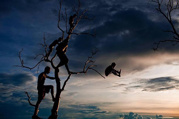 Life on Lake Murray, Papua New Guinea