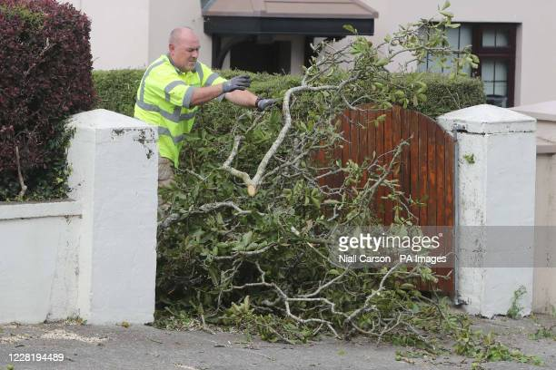 Local council workers remove a fallen tree in Waterford, Ireland.