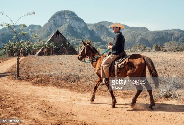local cowboy riding horse in cuba - pinar del rio stock photos and pictures