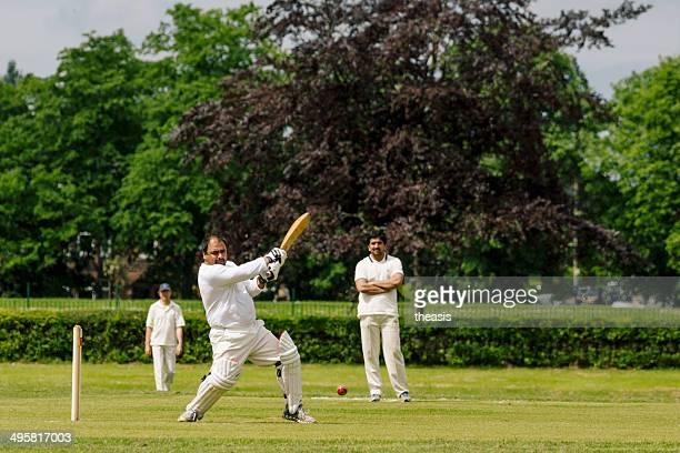 lokaler cricket - theasis stock-fotos und bilder