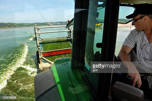 Local employees test a new device to remove green algae from the SaintMichelenGreves beach western France on May 29 2010 A campaign began in the...