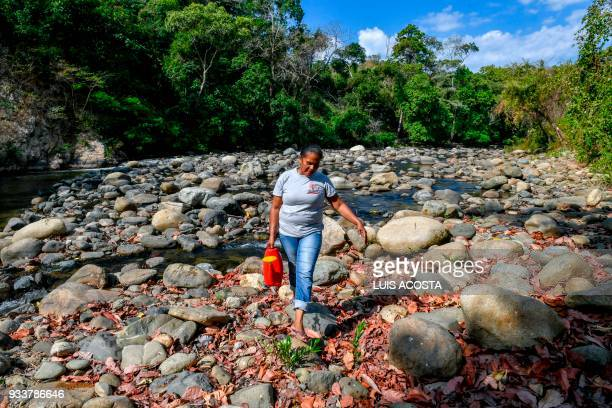 A local farmer carries water from the Jerez river to water Guaimaro trees at a small farm in Dibulla La Guajira department Colombia on February 28...
