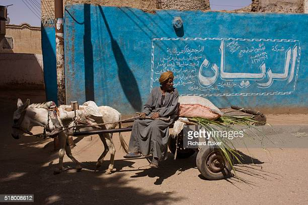 A local farmer on his cart carrying sugarcane is pulled along past a blue wall and arabic writing in a village near Medinet Habu on the West Bank of...