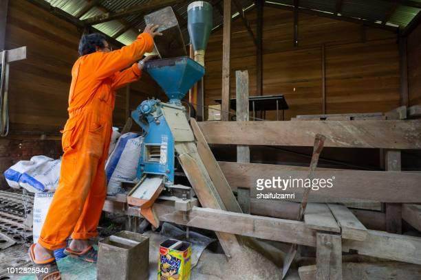 local farmer preparing a traditional bario paddy after harvest season at bario, sarawak, malaysia. - shaifulzamri 個照片及圖片檔