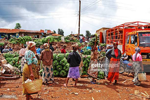 CONTENT] Local farmers every day go to the Mwika market to sell their products The village is not far from MtKilimanjaro and Kenya border Tanzania...