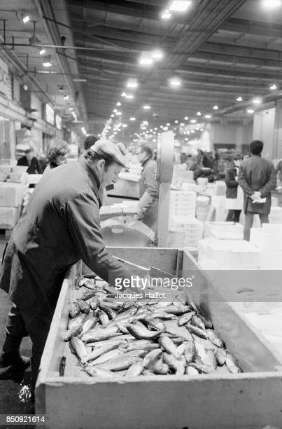 Local fishermen negotiate prices at the market of Rungis