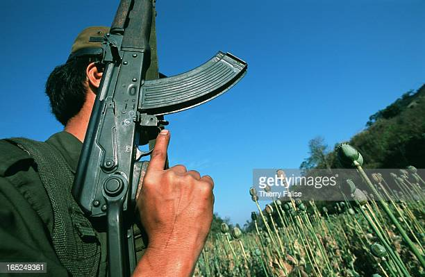 A local guerilla soldier makes his way through a poppy field near the Jew Kaw village