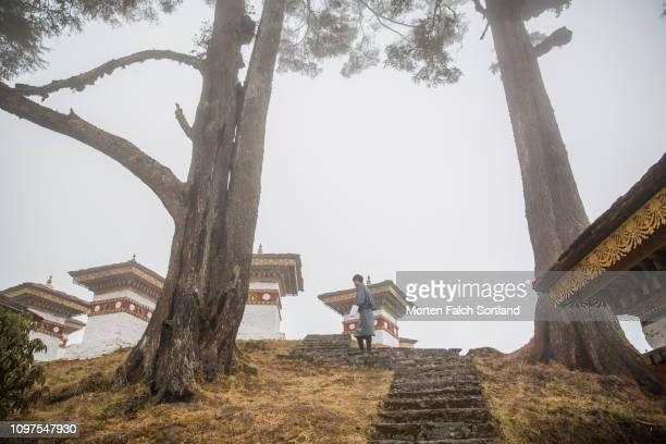 a local guide walks through the chortens at the dochula mountain pass in dochula, bhutan springtime - dochula pass stock-fotos und bilder