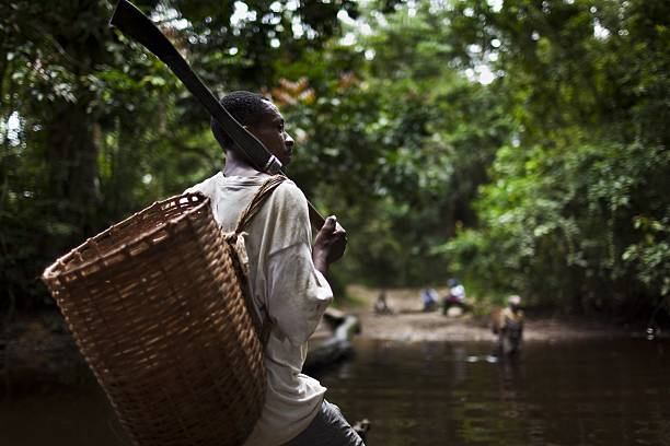 Hunting for Bushmeat in Cameroon