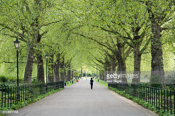 local landmarks - battersea park stock pictures, royalty-free photos & images