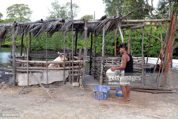 A local man feeds his pig on November 4 2017 in Tubusereia Central Province Papua New Guinea