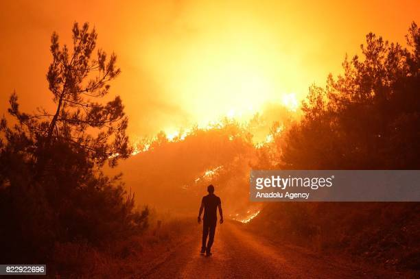 A local man is seen amid forest fire in Bayindir district of Izmir Turkey on July 25 2017 Approximately 100 hectare forestland is affected by the fire