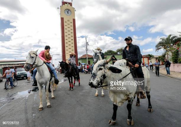 Local men are pictured on their horses and Brahman cattle during the San Sebastian festivity in Diriamba Carazo province some 50 kilometres south of...