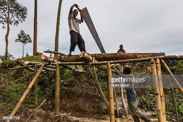 Local men cut wood for a new camp being constructed for visitors to the gorilla sector of Virunga National Park on August 6 2013 in DR Congo UK...