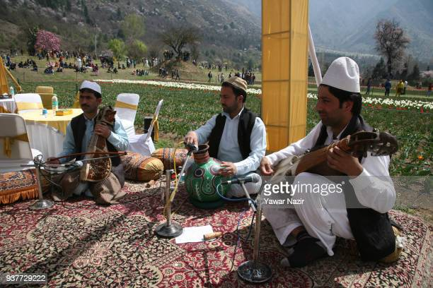 Local mucisians in a traditional Kashmiri attire play music in the Siraj Bagh tulip garden where more than two million tulips are expected to bloom...