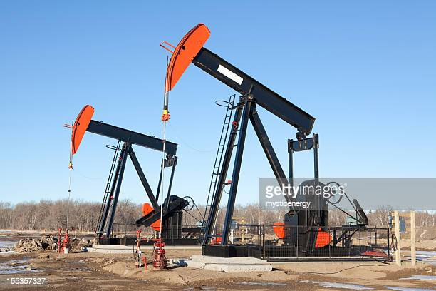 Local Oil