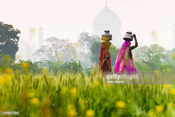 local people carrying water pots by the taj mahal - agra stock pictures, royalty-free photos & images