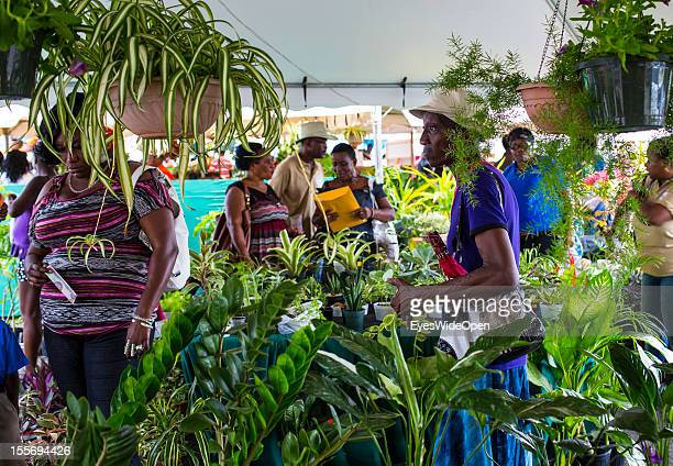 Local people pupils and farmers buying and selling goods or sweets on a marketplace on October 21 2012 in Scarborough Trinidad And Tobago