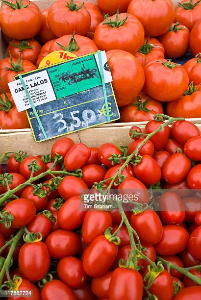 Local produce salad tomatoes and plum tomatoes at farmers market in Normandy France