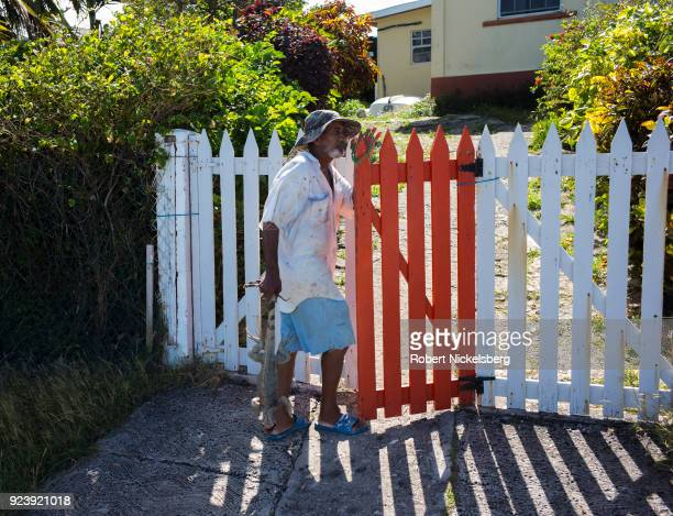 WINDWARD CARRIACOU GRENADA FEBRUARY 6 A local resident carries a dead green iguana he captured while the animal had been eating through his vegetable...