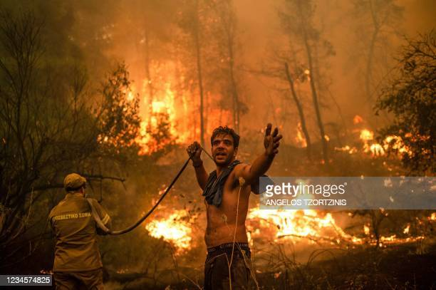 Local resident gestures as he holds n empty water hose during an attempt to extinguish forest fires approaching the village of Pefki on Evia island,...