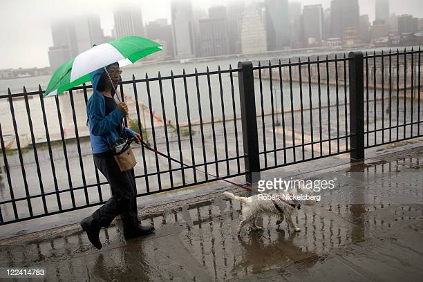 A local resident of Brooklyn Heights walks her dog along the Promenade overlooking the Manhattan skyline August 28 2011 in the Brooklyn borough of...