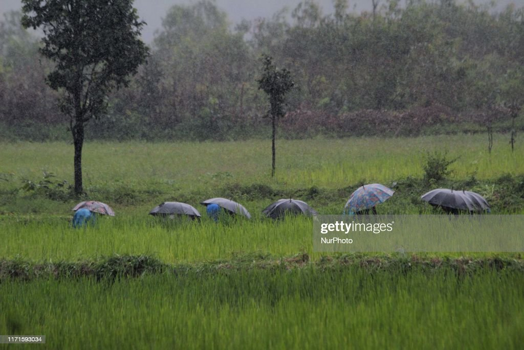 India - Weather : News Photo