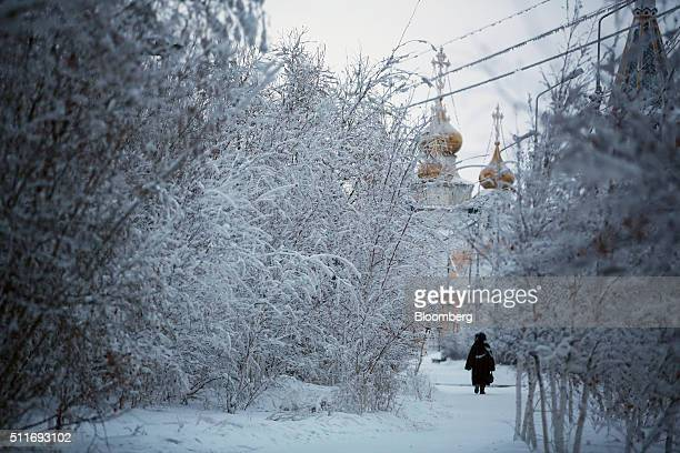 A local resident walks past frozen trees as she walks towards a Russian orthodox church in Yakutsk Sakha Republic Russia on Sunday Feb 14 2016...
