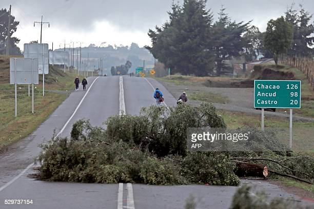 Local residents walk past barricade made out of logs and tree branches placed across a road near Castro Chiloe island about 1230 km south of Santiago...