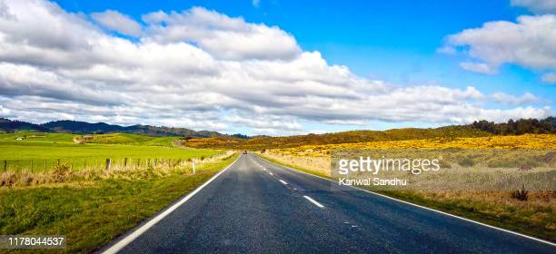 local rural road scene along thermal explorer highway in spring with colourful natural flowers and paddocks - north island new zealand stock pictures, royalty-free photos & images