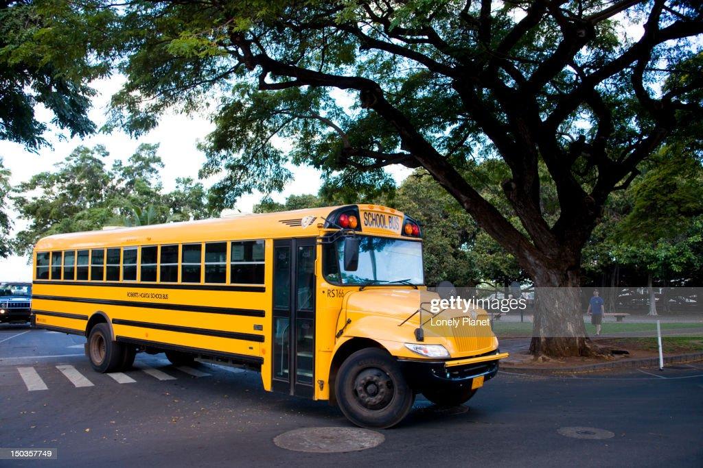 Local school bus. : Stock Photo