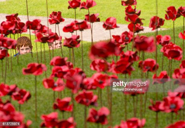 Local School children visit the poppy sculpture 'Weeping Window' opens at Caernarfon Castle as part of a UK-wide tour organised by 14-18 NOW on...