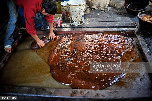 A Local takes part of cooled Raw boiled molasses to prepare molasses Chaku on 06 January 2015 at Tokha Kathmandu Nepal for the celebration of Maghe...