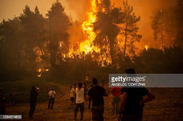 Local uses a megaphone as others observe a large forest fire approaching the village of Pefki on Evia island, Greece's second largest island, on...
