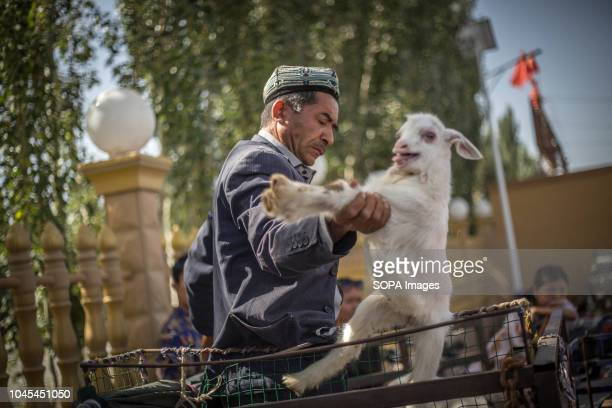 Local Uyghur man load his truck while waiting for customers at a livestock market in Kashgar city, northwestern Xinjiang Uyghur Autonomous Region in...