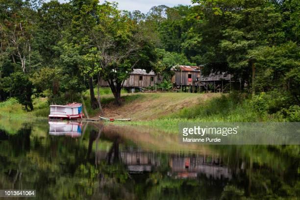 local village on the amazon river, brazil - manaus - fotografias e filmes do acervo