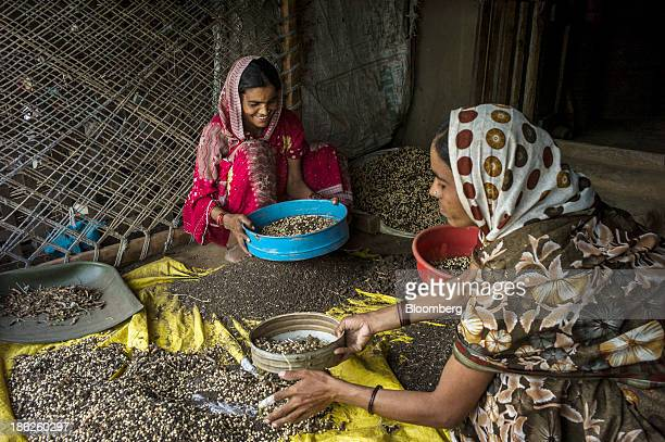 Local village women filter impurities and debris from soybeans in Dariyapur village in the district of Burhanpur Madhya Pradesh India on Thursday Oct...