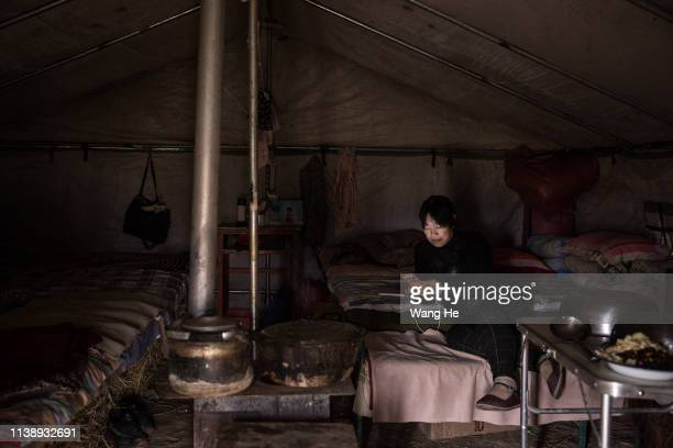 A local women in the tent uses iPhone in the desert at Mingqin county on March 28th 2019 in Wuwei Gansu Province China In order to prevent...