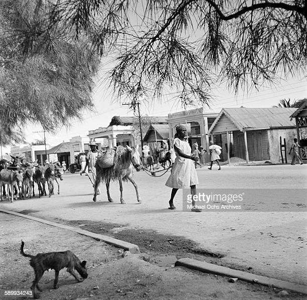 A local women leads a pack horse down a street in PortauPrince Haiti