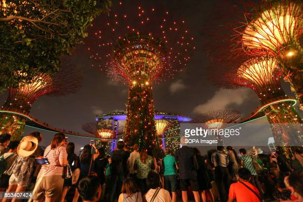 Locals and tourists are seen experiencing the MidAutumn Festival in a whole new light at 'Gardens by the Bay' with celebrations that fuse the...