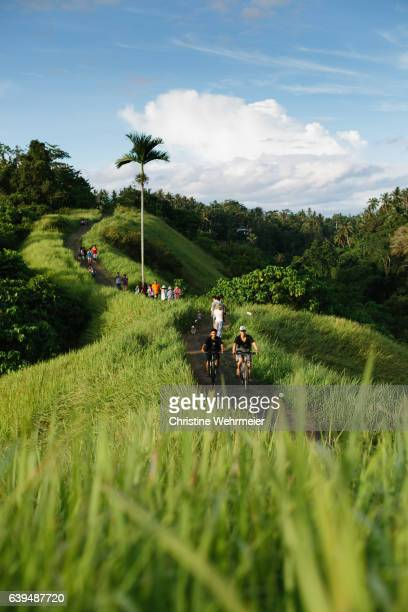 Locals and tourists enjoying a walk along the Campuhan Ridge Walk in Ubud, Bali in the late afternoon