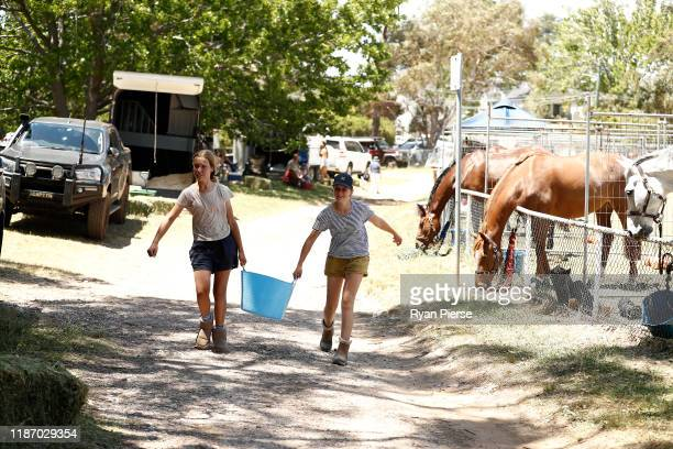 Locals are seen attending to Horses at the Evacuation Area at French's Forest Showgrounds on November 12 2019 in Sydney Australia More than 50 fires...