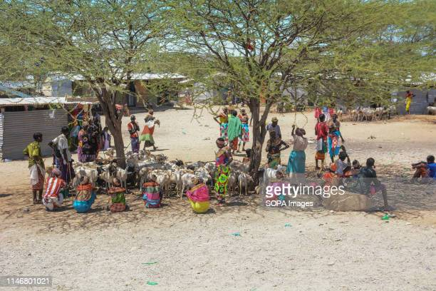 Locals are seen under a tree at a livestock market in a town along the Great North Road also known as the Cape to Cairo Road. The road runs through...
