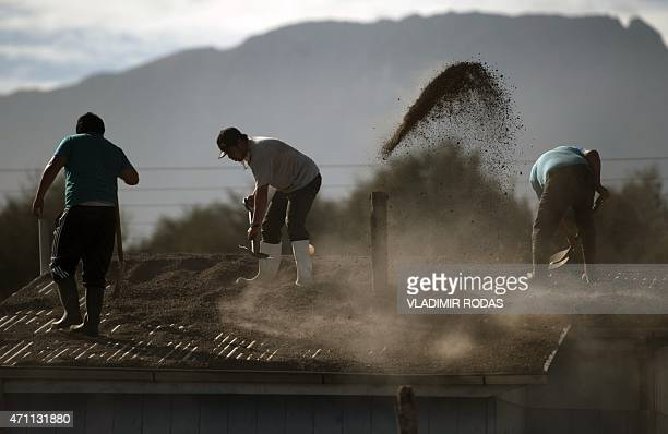 Locals clean their house roof covered by ashes from the Calbuco volcano in La Ensenada on April 25 2015 Calbuco volcano kept villagers on edge as it...